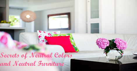 Neutral Colors and Neutral Furniture