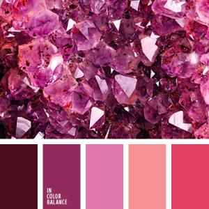 Electric Pink & Fuchsia