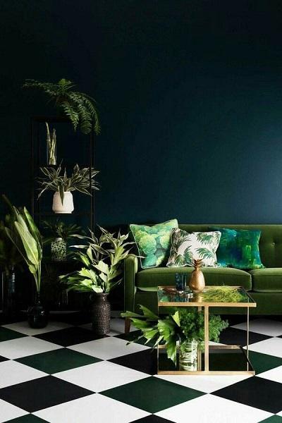 indoor plants according to concept interior