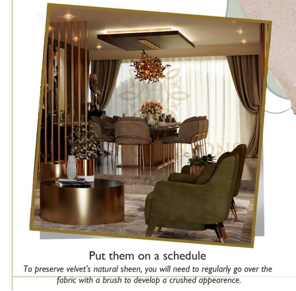 Professional cleaning   upholstery furniture